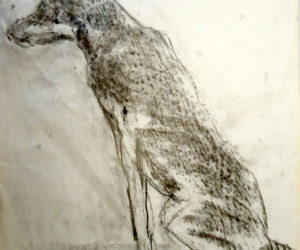 Drawing from a Photograph with Charcoal with Jery Haworth