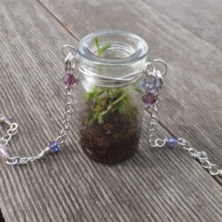 Living Terrarium Necklace with Sondra Barrington