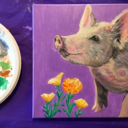 Art, Animals and Gardens with Cassy Brown - SOLD OUT